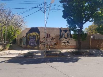EXCELENTE LOTE ESQUINA EN TIBURCIO BENEGAS Y LAPRIDA DE CUIDAD - 315 M2